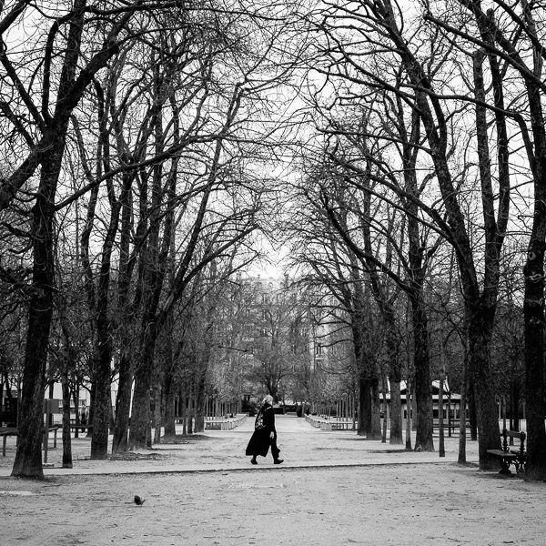 Valerie Jardin Le Jardin Du Luxembourg 1 This Week In Photo