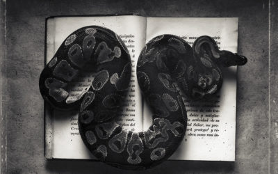 Kernan Snake Book