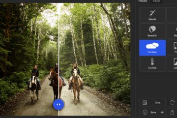 Lucid Screenshot JPEG