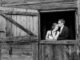 Wedding-Photography-at-Fort-Edmonton-Park---SB