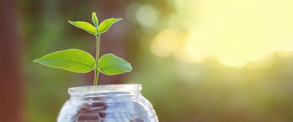 growing-money